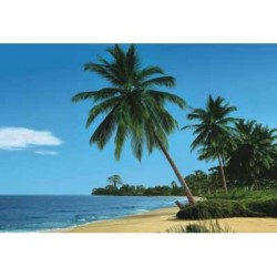 fototapeta African Beach 4-074 komar