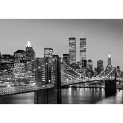 Fototapeta 00957 Manhattan Skyline At Night Wizard & Genius