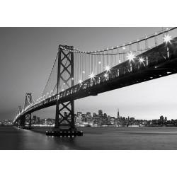 Fototapeta 00958 San Francisco Skyline Wizard & Genius