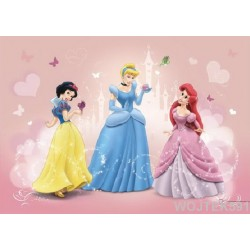 Fototapeta Disney Princess Księżniczki  4-009D 254x184