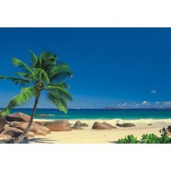 Fototapeta Tropical Seychellen 8-006  Komar