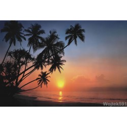 Fototapeta Tropical Sunset 8-030 Komar